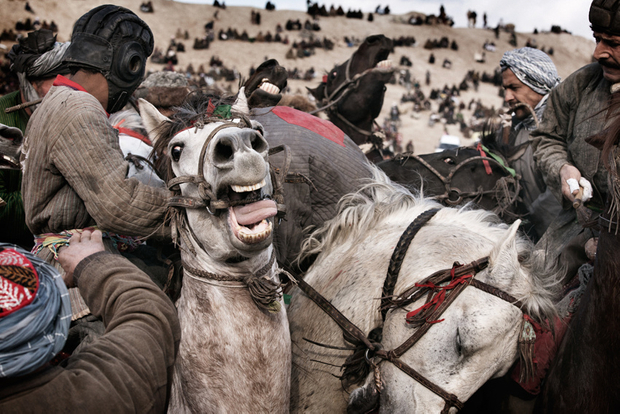 Afghan Guernica. Balkh, Afghanistan 1391 (2013)