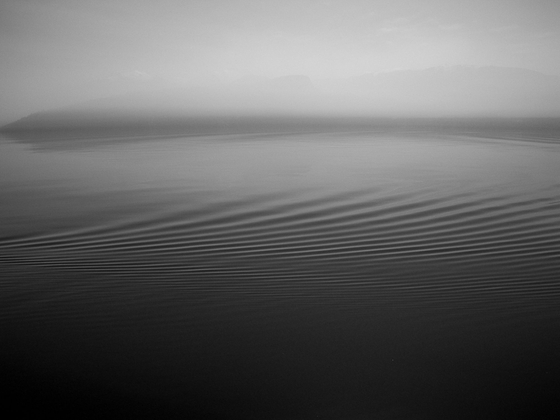 Ashen Ripples