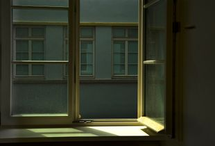 Das dunkle Fenster
