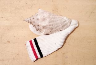 Gym sock paired with shell                      © Collin Avery
