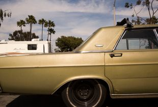Gold Galaxie