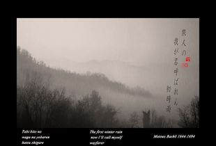 """The first winter rain""  from the research ""Haiku""  © Roberto Spotti"