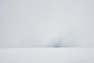 Snow 6 - Lost