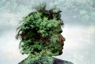 'Tree Spirit'