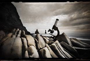The Microscope   © Seán Duggan