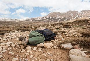 Asleep Shepherd