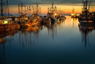 Fraser Docks