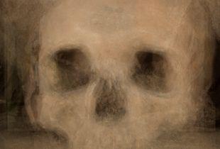 Composite of 32 skulls