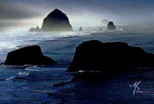 Coast watch - Fog