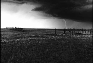 © George Webber  - Near Wardlow, Alberta, 1995