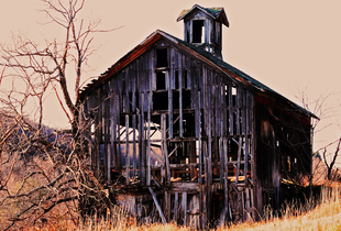 Skeleton Barn One