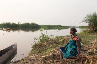 The Shire River Crossing, Mozambique.