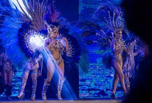 Carnaval Luminoso