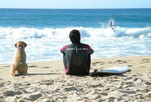 best surf friends