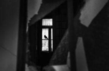 LensCulture Contemporary Photography