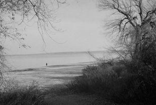 Lake Ontario Beach (Nov 2011) © Michael Grace-Martin
