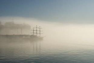 Nature: Early morning fog Oslo