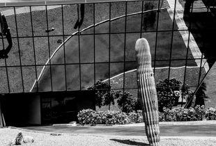 Tucson bank