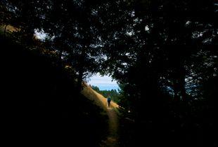 Hiking With Jeanne 1, Matt Davis Trail