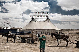 Circus Revolution