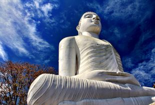 Serenity under Blue Skies