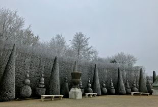 Waiting for you, January, garden of Versailles, France