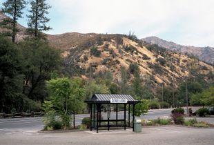 Untitled (The Cedar Lodge)