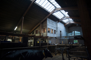 Anders Enlund in his apartment inside Milkhill cattle shed.