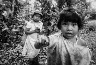 Kogi indigenous 1