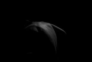 Rayn At Night 2, Dark Matter 1