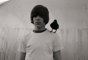 Boy with black bird.