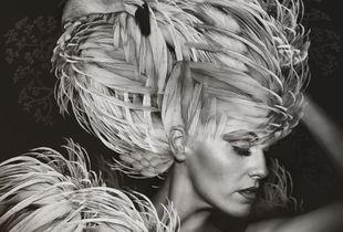 Beauté Aviaire: Flamingo #1
