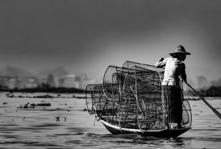 Fisherman - Inle Lake