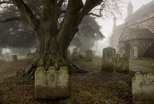 Graveyard at St. Mary's