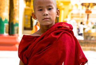 Little old soul Monk