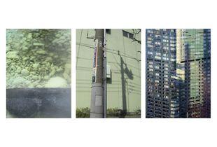 L'Absinthe du quotidien  © Sonia Hamza