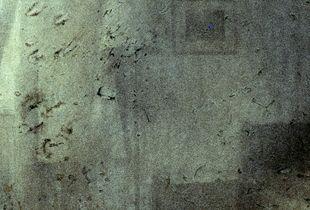 Left behind. Fragments. 11