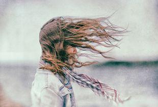 Japanese Wind