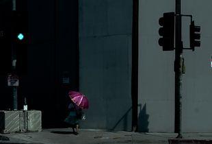 Pink Umbrella, 2017