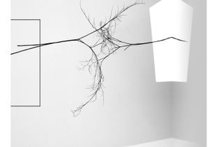 Delicate Entanglements... cannot be separated without damage.