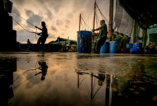 The last fishermen