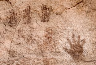 Handprint. Canyonlands National Park, UT. © David Gardner
