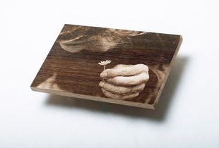 Touch the forest, touched by the forest. (wood version)