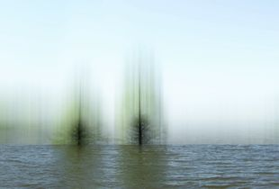 """© Ellen Jantzen - """"Whetting The Waters"""""""