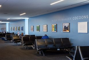 Previous SFO Museum Gallery B3, Terminal 1 show