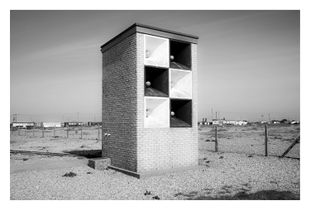 Dungeness #16