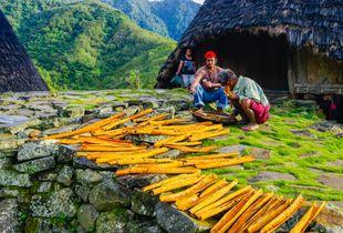 The Cinnamon Farmers