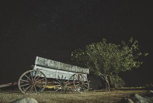 Late night stars