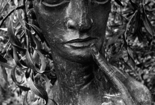 Maiden.  Sissinghurst, UK