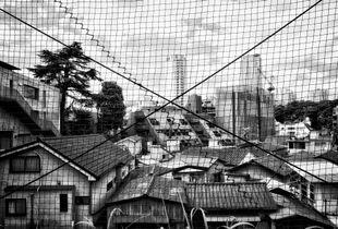 crosssed tokyo